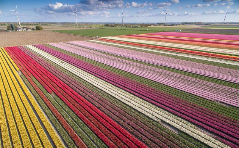 30 ha – Almere